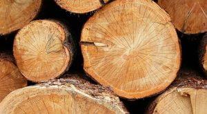 selecting logs