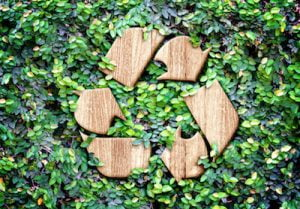 can old plywood be recycled?