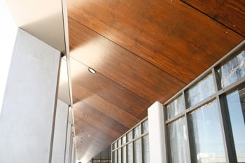 external plywood cladding Sydney